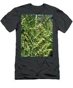 Wormwood Men's T-Shirt (Athletic Fit)
