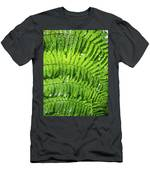 Fern Men's T-Shirt (Athletic Fit) by Nick Bywater