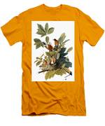 Audubon: Robin Men's T-Shirt (Athletic Fit)