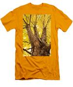 Maple Tree Portrait Men's T-Shirt (Athletic Fit)