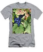Grapes 3 Men's T-Shirt (Athletic Fit)