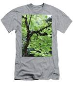 Soft Green Leaves Men's T-Shirt (Athletic Fit)