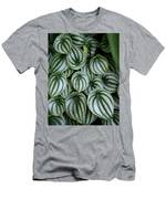 Watermelon Leaves 2 Men's T-Shirt (Athletic Fit)
