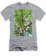 Basking In The Light Of The Lord Men's T-Shirt (Athletic Fit)