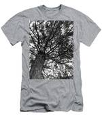 My Tree Men's T-Shirt (Athletic Fit)