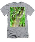 Rainbow Eucalyptus Men's T-Shirt (Athletic Fit)