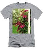 Rouge Cardinal Clematis 2 Men's T-Shirt (Athletic Fit)