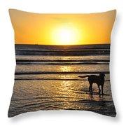 A Mans Best Friend Sunset Throw Pillow
