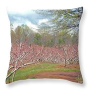 A Peach Orchard   Throw Pillow