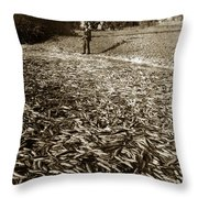 A Run Of Squawfish Stranded In Kelsey Creek Near Kelseyville Lake County April 29 1899 Throw Pillow