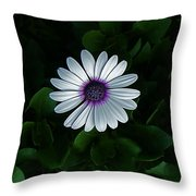 One Single Flower Throw Pillow