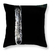 A Winters Tail Throw Pillow
