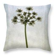 Aethusa Cynapium Throw Pillow