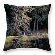 Alder Tree Reflection In Pond Throw Pillow