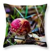 Amanita Muscaria Commonly Known As The Fly Agaric Or Fly Amanita Throw Pillow