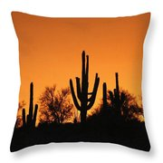 Arizona Sagurao Sunset Throw Pillow