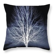 At Maple Hill Park Throw Pillow
