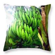 Banana Plants Throw Pillow