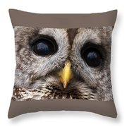 Barred Owl Eye's Throw Pillow