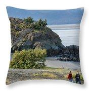 Beluga Point  Throw Pillow