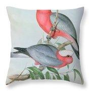 Birds Of Asia Throw Pillow