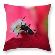 Black Bug Throw Pillow