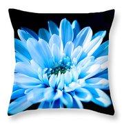 Blue Chrysanthemum Throw Pillow