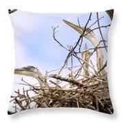 Blue Heron Rookery 7214 Throw Pillow