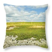 Blueberry Field With Blue Sky And Clouds In Maine Throw Pillow