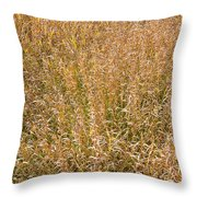 Brown Grass Texture Throw Pillow