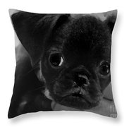 Brussel Griffon Puppy Painting Throw Pillow