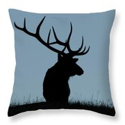 Bull Elk At First Light Throw Pillow