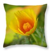 California Poppy In Autumn  Throw Pillow