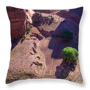 Canyon De Chelly Farmland Throw Pillow