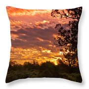 Canyon Dechelly Sunset In Copper And Gold Throw Pillow