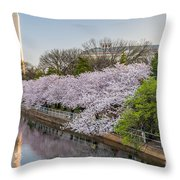 Cherry Reflection  Throw Pillow