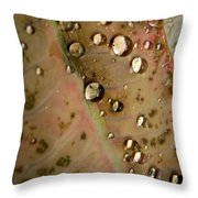 Clear Drops Throw Pillow