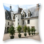 Courtyard Chateau Chaumont Throw Pillow