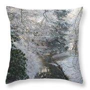 Creek Reflection Throw Pillow