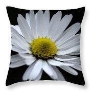 Daisy 2 Throw Pillow