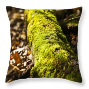 Dead Log With Moss Throw Pillow