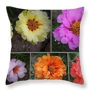 Desert Roses Delight Throw Pillow