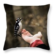 Downy Woodpecker In Hand Throw Pillow