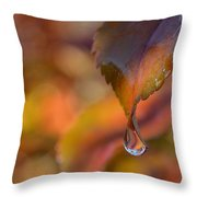 Drip In Pink -1 Long Throw Pillow