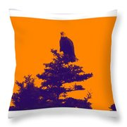 Eagle Scout At Sunset Throw Pillow