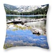 East Lake Throw Pillow