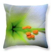 Easter A New Beginning  Throw Pillow