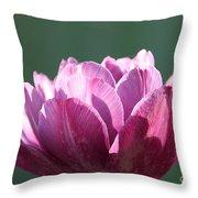 Exotic Tulip Throw Pillow