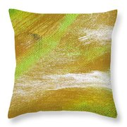Exuberant Cooper Throw Pillow