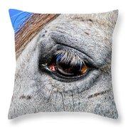 Eye Of A Horse Throw Pillow